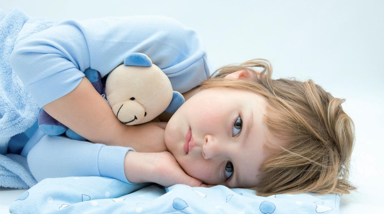 Experto en Anatomía Personal y Salud Infantil. ( A Distancia ...